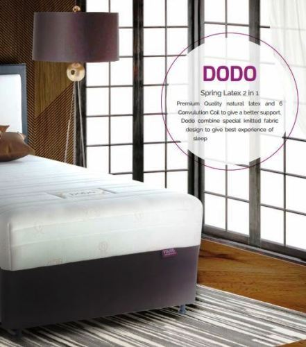 dodo-spring-latex-2-in-1
